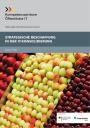 Titelbild Strategische Beschaffung in der IT-Konsolidierung